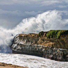 SURF FROM THE ROCK